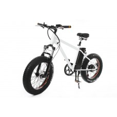 Electric bicycle (300W (36V), 10 Аh, frame: high strength steel, max speed: 35km/h , range per charg